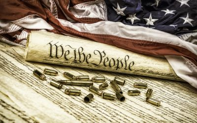 Why Did They Write the Second Amendment?