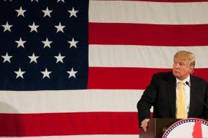 A photo of Donald Trump.